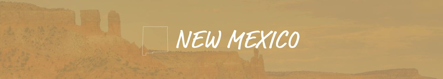 new mexico banner